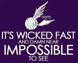 harry potter, harry potter quotes, oliver wood, quidditch, the golden ...