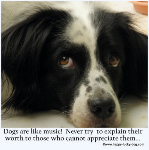 Quotes about dogs, dogs are like music