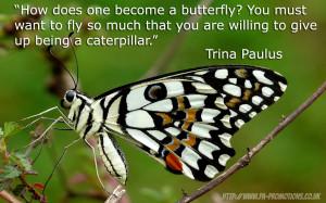 Inspirational Quotes: Trina Paulus