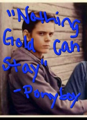Love this quote said by Ponyboy Curtis in The Outsiders!!