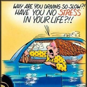 ... are you driving so slow have you no stress in your life funny comics