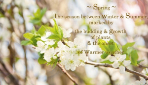 Spring Flower Quotes and Sayings