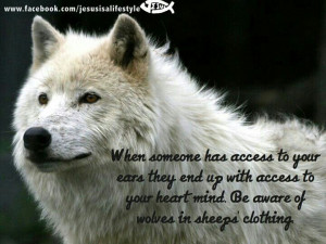 Beware Wolves Sheeps Clothing