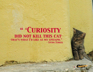 Studs Terkel #quote