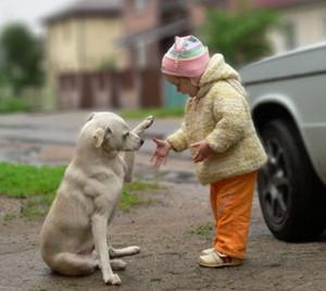 little_girl_and_dog_01.jpg