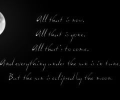 Pink Floyd Quotes Heart