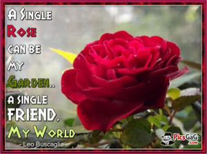 Love Sayings and. Love Quotes If I had a rose for every time I thought ...