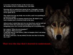quotes navy seals   Be the one chasing the wolf - Motivated.us ...