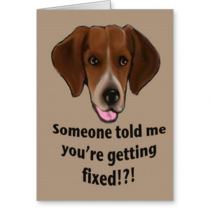 Funny Get well card for dogs