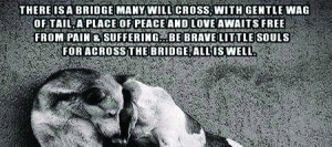 Beautiful Quotes About Dogs Death