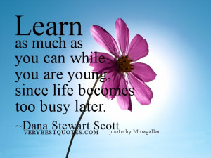 Back to School Quotes - Learn as much as you can while you are young ...
