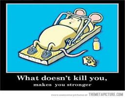 ... Lesson Number 1 Very Cute Mouse Trap Working Fitness Funny Picture