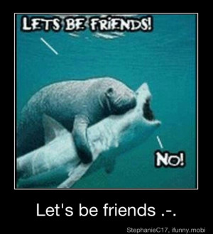 haha thats why I love manatees, they are so friendly