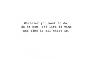 Whatever you want to do, do it now. For life is time and time is all ...