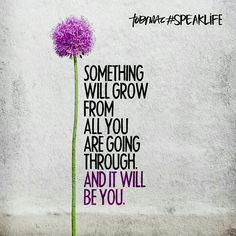 Something will grow from all you are going through and it will be you ...