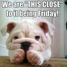 Cute+Happy+Thursday+Quotes   Name: 403x403xwe-are-almost-there-friday ...
