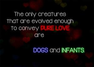 Photo Quotes Pure Love