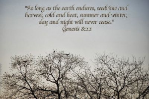 ... and heat, and summer and winter, and day and night shall not cease