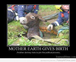MOTHER EARTH GIVES BIRTH ANOTHER DONKEY