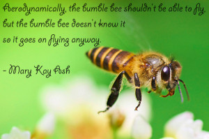Bumble Bee Flying Quote Inspirational quotes