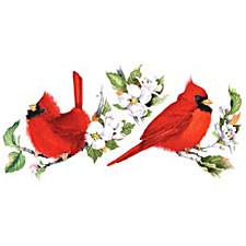 Cardinals/Dogwood T-Shirt