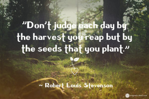 planting seeds quotes when you plant when you