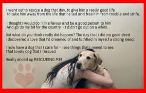 Animal Rescue Sayings...