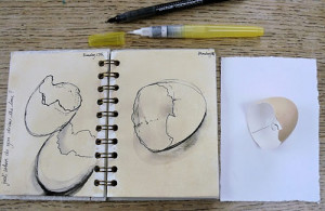 have continued drawing my egg shell and love the simplicity of the ...