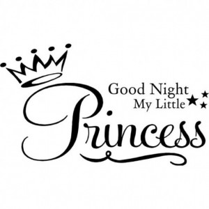 Goodnight My Little Princess