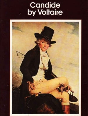 candide essays on religion Candide, which has been credited the base for the book and movie forrest gump, features a main character teeming with naivet pangloss says all is for the better.