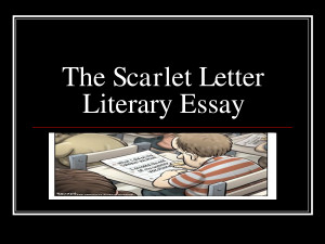 the scarlet letter passage explication This passage comes from the introductory section of the scarlet letter, in which  the narrator details how he decided to write his version of hester prynne's story.