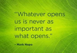 ep432-own-sss-mark-nepo-quotes-2-600x411.jpg