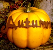 Fall - Pumpkin Sayings - Autumn