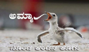 Kannada Funny Sayings | Funny Pictures | Funny Quotes