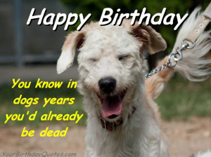 Funny Sarcastic Quotes About Life: You Know In Dogs Years You Had ...