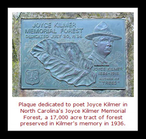 winter afternoon in 1913, at his home in New Jersey, poet Joyce Kilmer ...