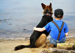 Dog And Boy Friendship | 2706 x 1920 | Download | Close