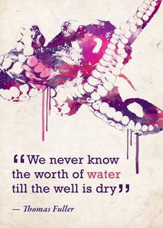 ... conservation #quotes conservation quotes, conserv quot, beauti quot