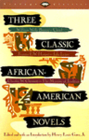Three Classic African-American Novels: Clotel, Iola Leary, The Marrow ...