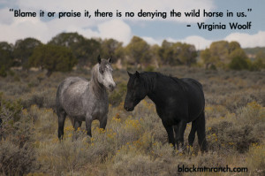 Quotes Wild Horses http://blackmtnranch.com/horse-quotes/