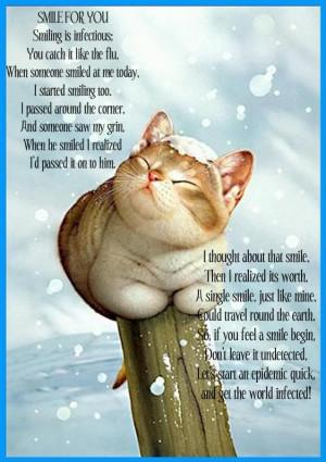 Cat Quotes (59)