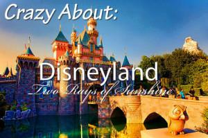 Disney World Park Tickets