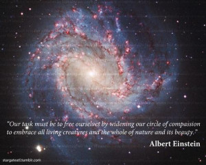 Albert einstein, quotes, sayings, nature, beauty, pics