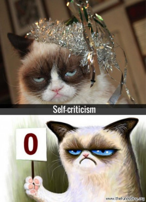 grumpy cat in disney movies funny meme and funny gif from gifsec com