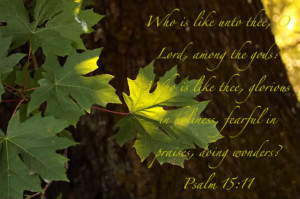 http://www.pics22.com/who-is-like-unto-tree-bible-quote/