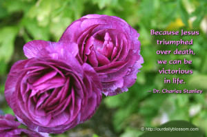 Spiritual Quote – Dr. Charles Stanley