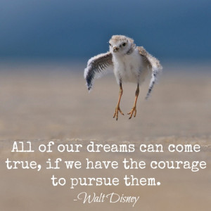 picture from here - quote from Walt Disney - merged by me}