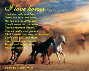 My first Horse Poem Image