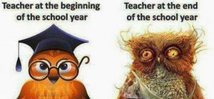Funny Owl, Funny School Images, Funny Pictures