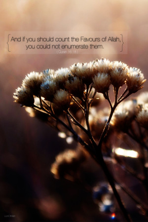 Home » Quranic Verses » Surat an-Nahl » Quran 16:18 » Allah's ...